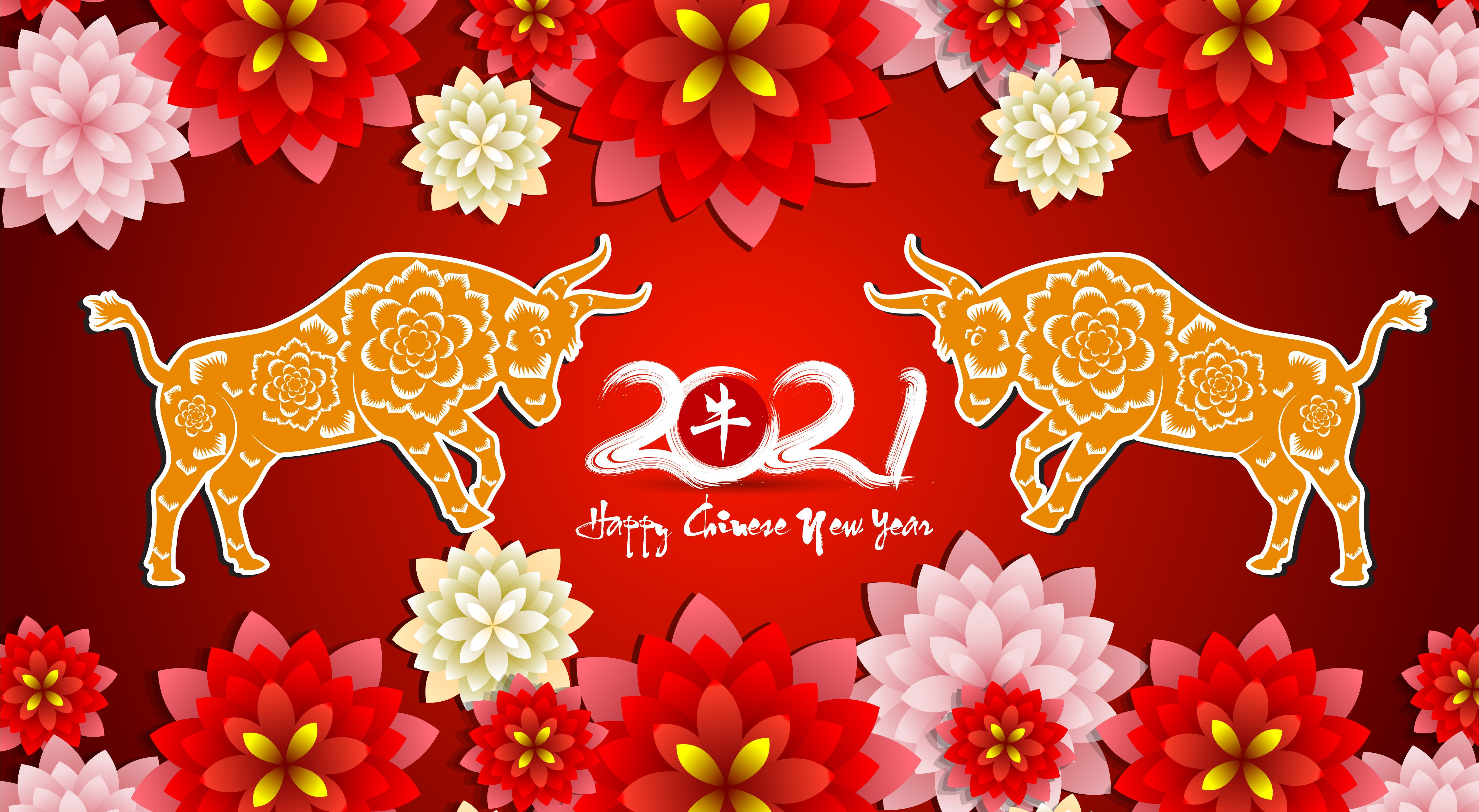 2021 Chinese New Year Wallpapers 4515x2479