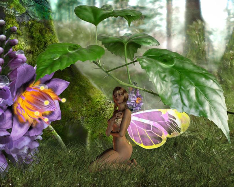 Fairies Screensavers and Wallpapers WallpaperSafari