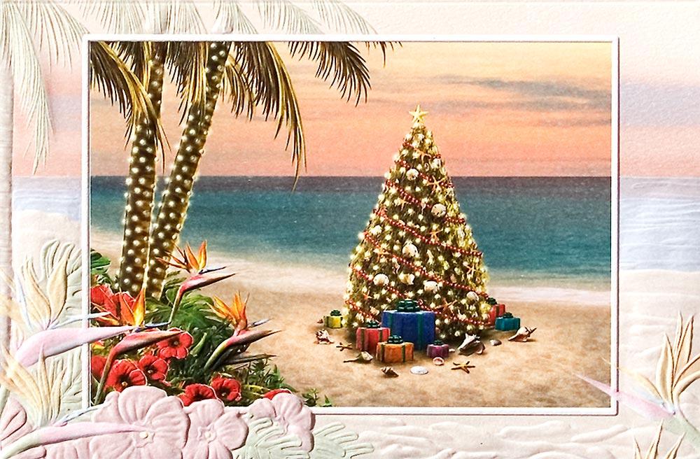 Tropical Christmas Cards | Olivero