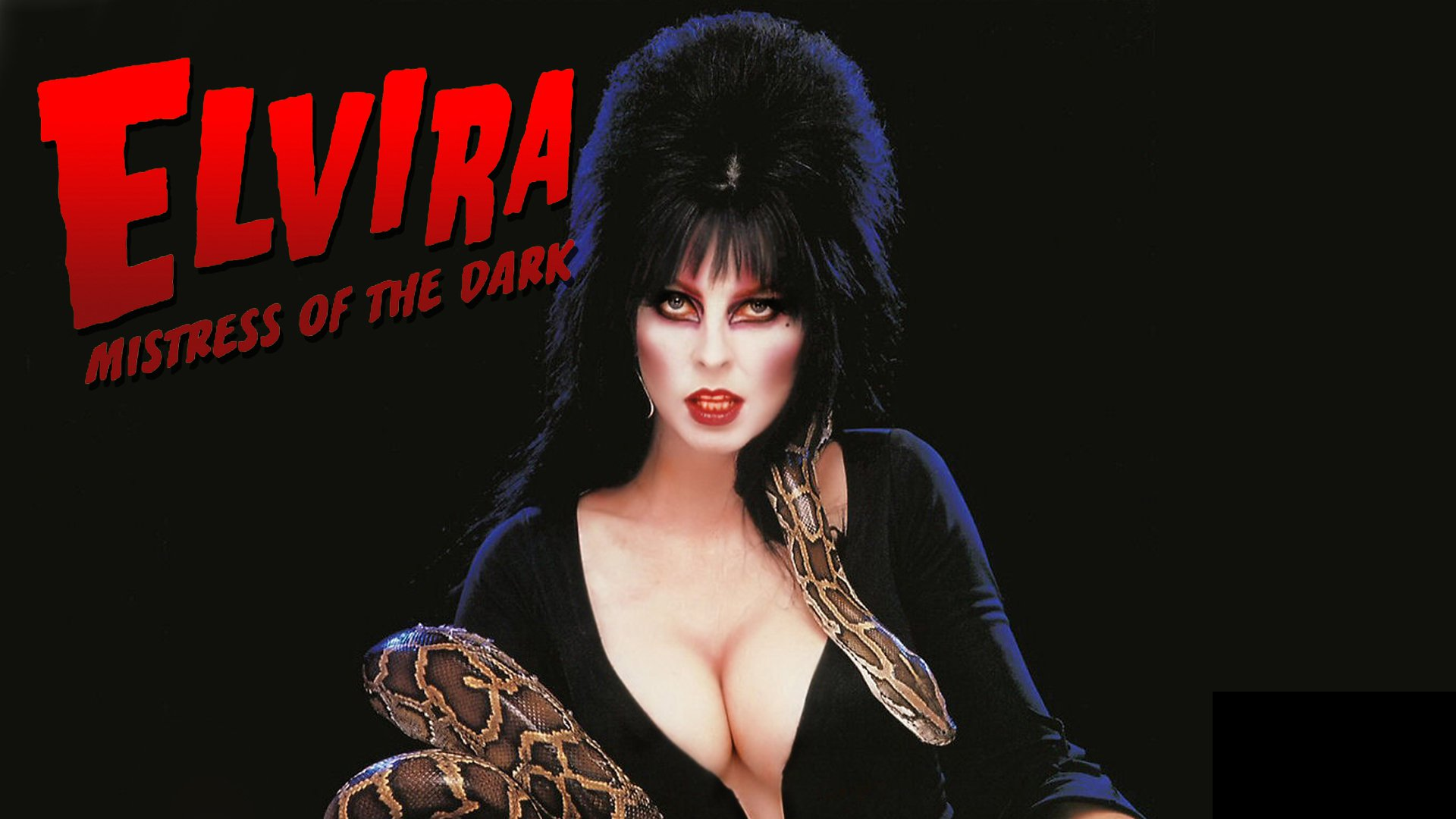 Lists the movie Elvira Mistress of the Dark belongs to 1920x1080