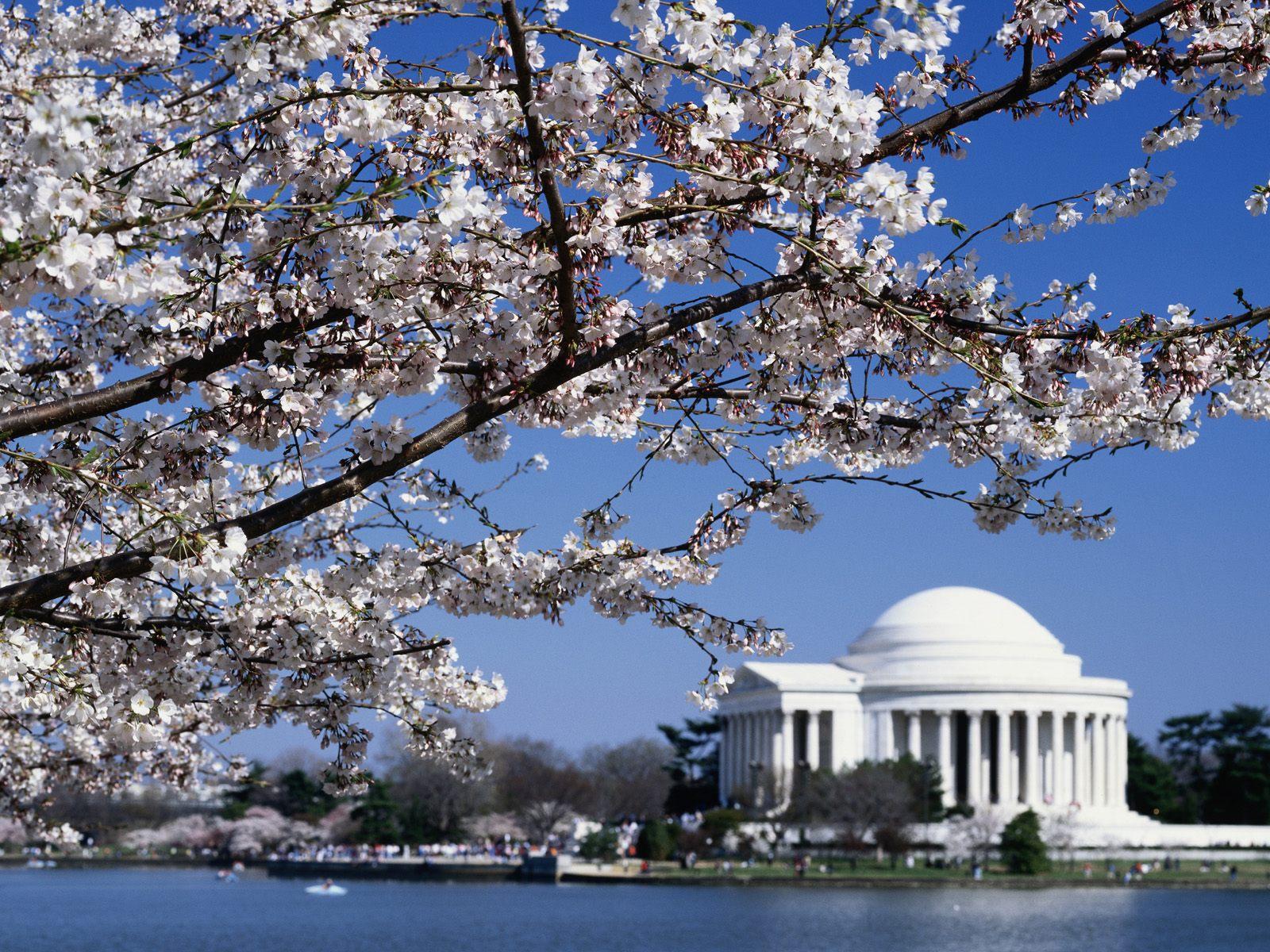 Washington DC desktop wallpaper Cities wallpapers 1600x1200