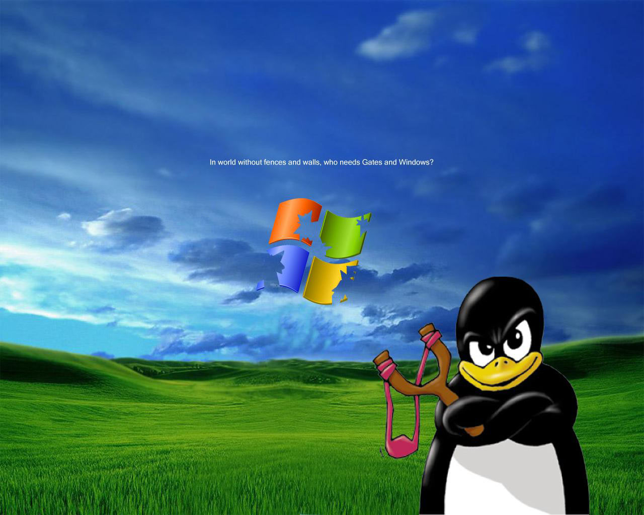 HD Animal Wallpapers Desktop Backgrounds 1280x1024
