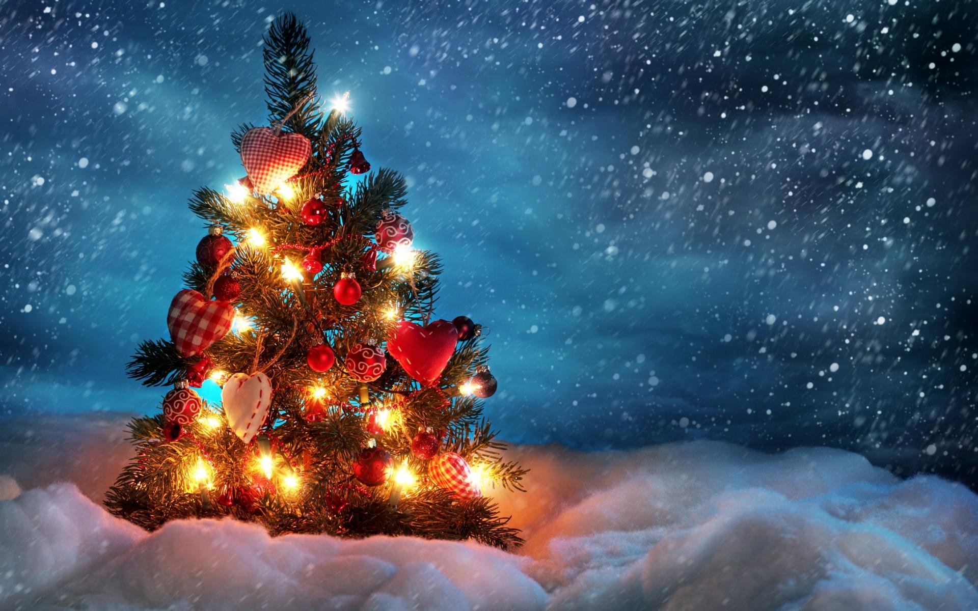 Cute Christmas Tree computer desktop wallpaper 1920x1200