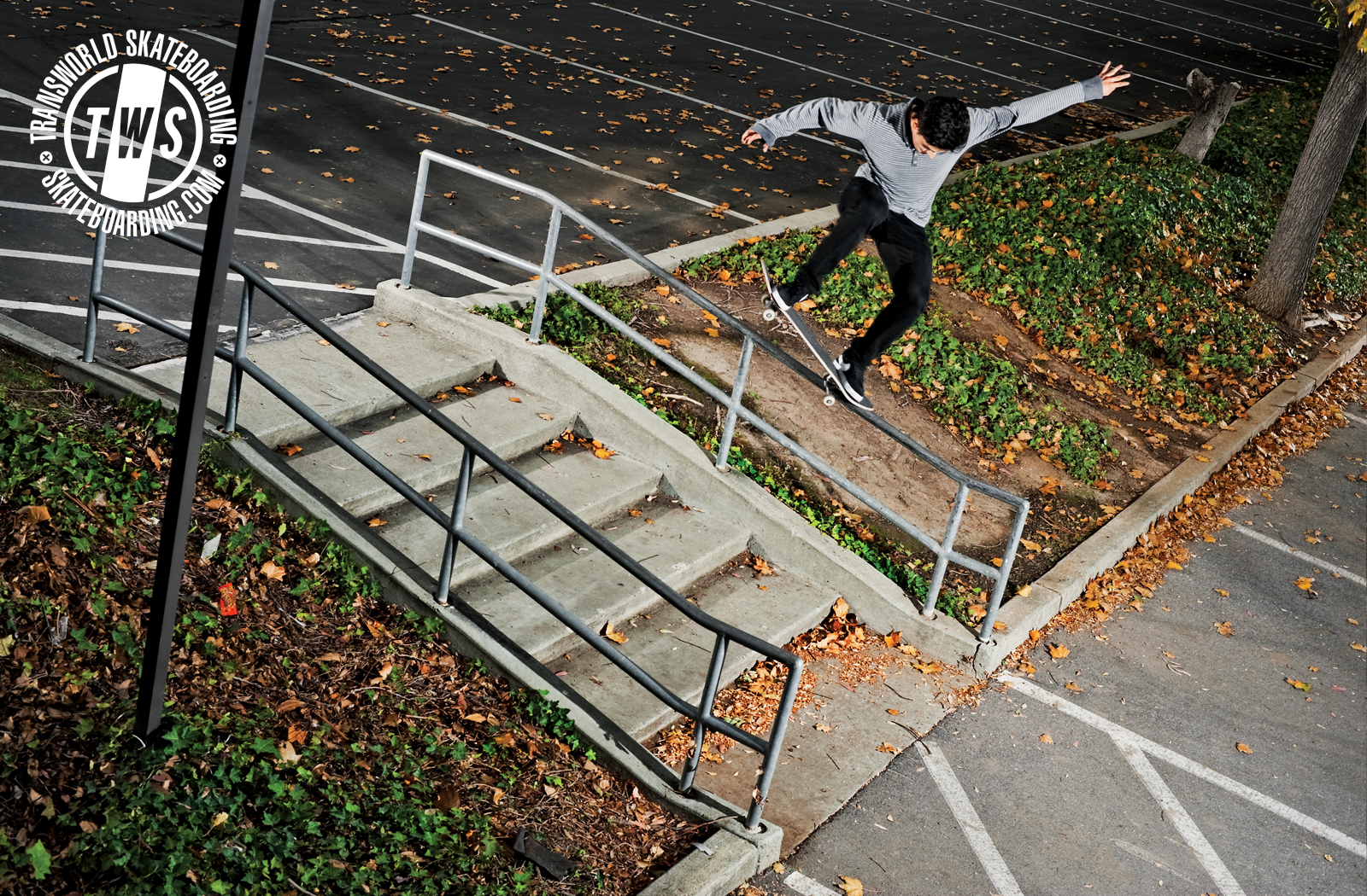 Wednesday Wallpaper Daryl Angel Transworld Skateboarding 1600x1050