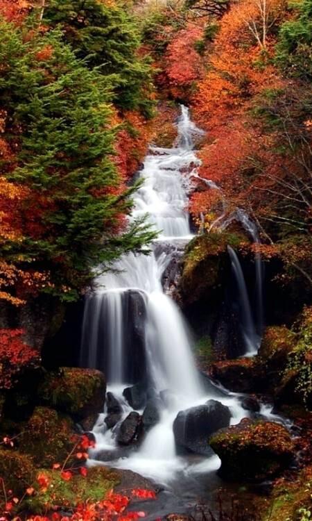 screensaver mobile live waterfall hd screensaver wallpapers 450 x 750 450x750