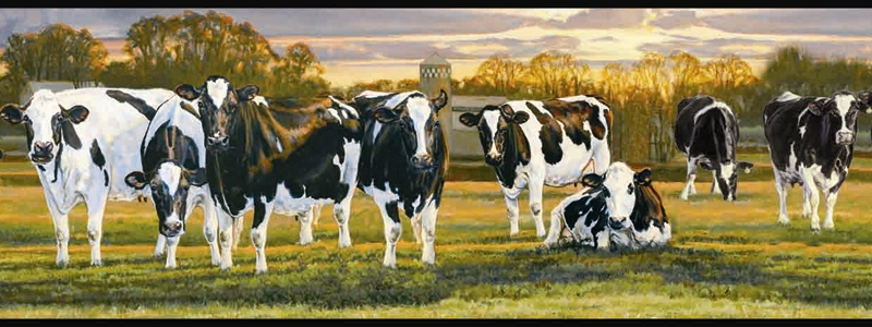 Country Dairy Cow Wallpaper Border FFR65382B farm black and white 800x300