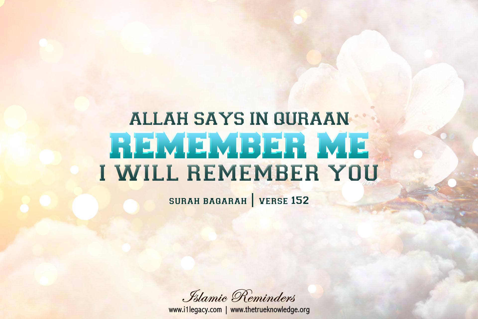 PC Wallpaper True Knowledge of Islam Muslims Quran Sunnah 1920x1280
