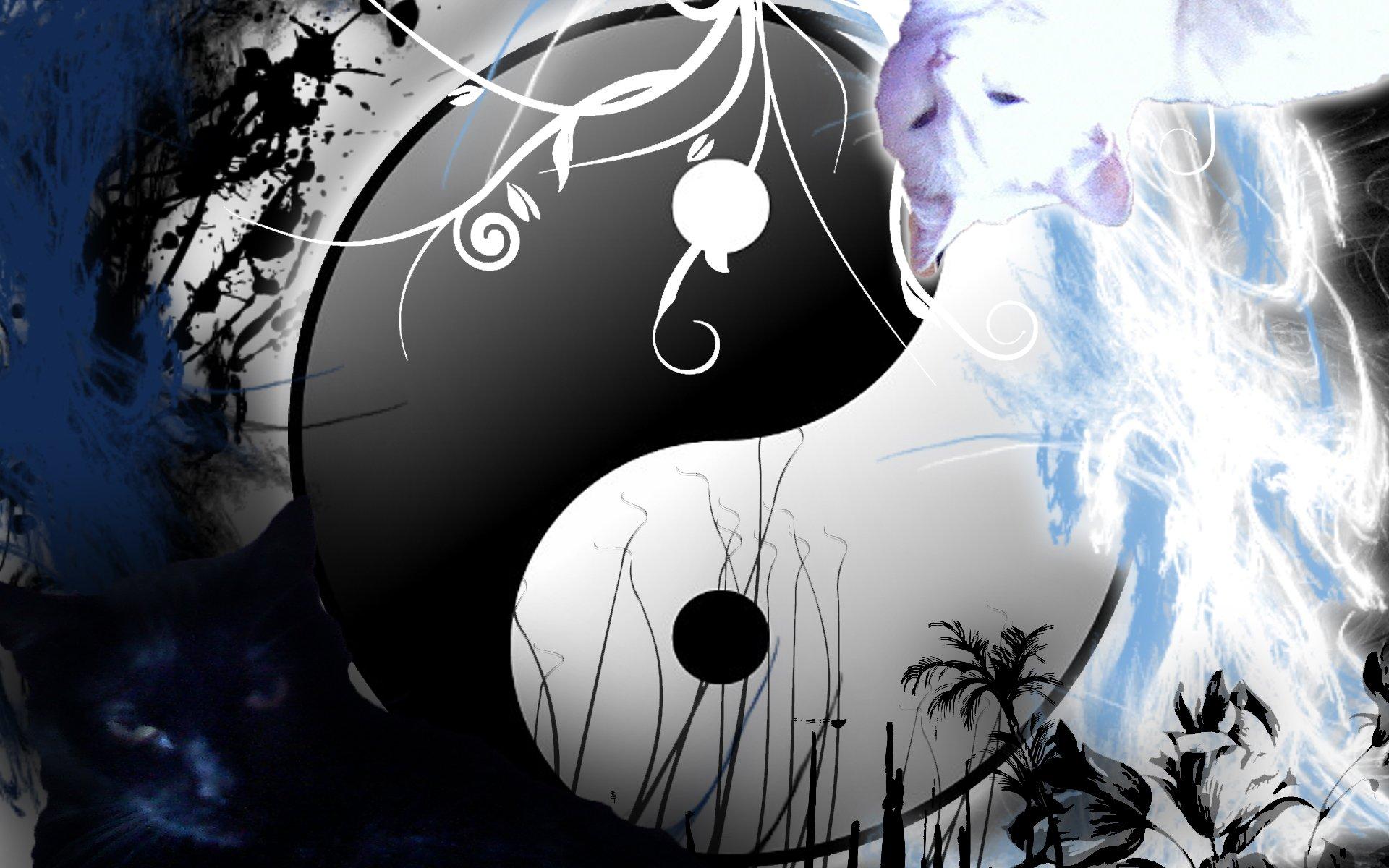 Yin Yang Dragon Wallpaper - WallpaperSafari