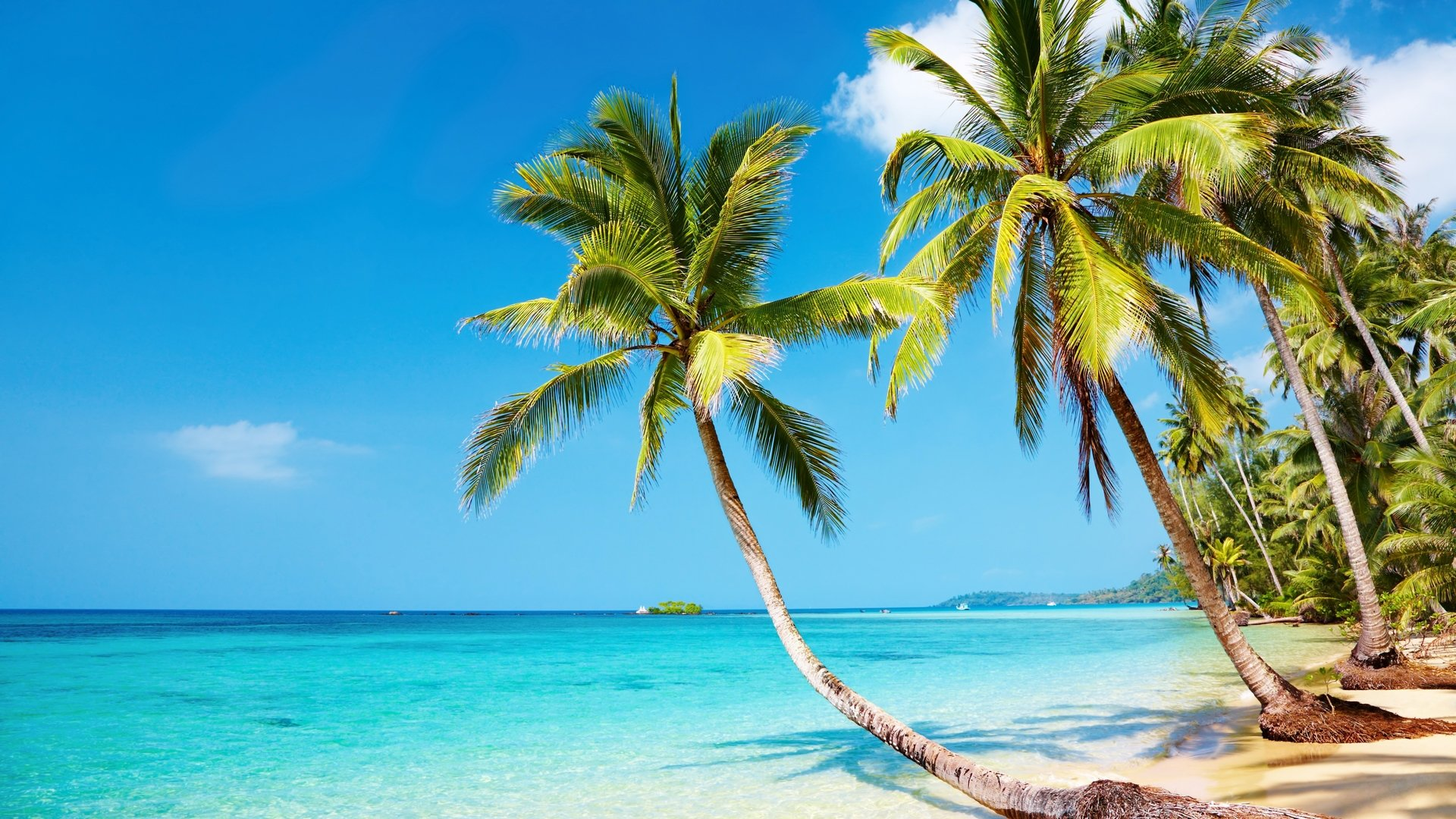 Tropical beach 4K Ultra HD wallpaper 4k WallpaperNet 1920x1080