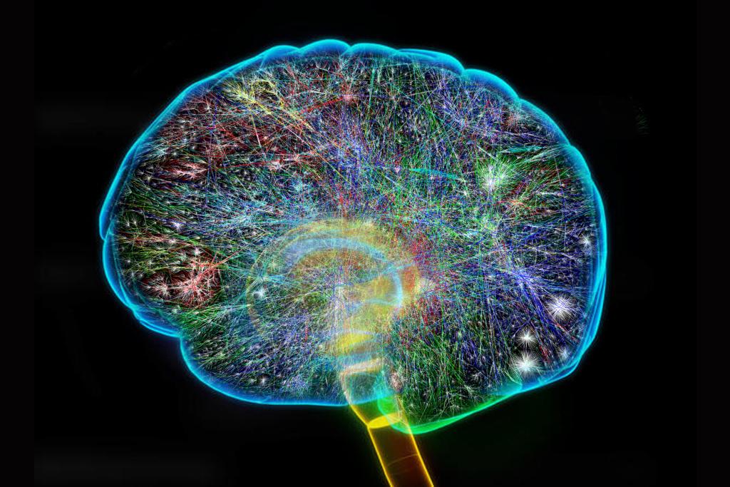 Neurosurgeon by williamsa4 on emaze 1024x683