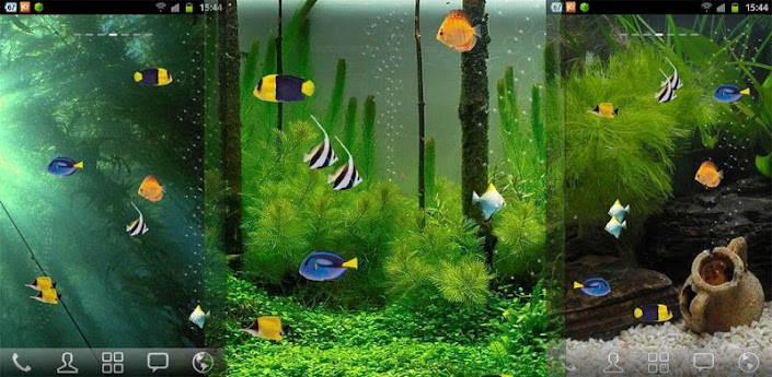 free aquarium live wallpaper rainbow app 16362 install 705x345