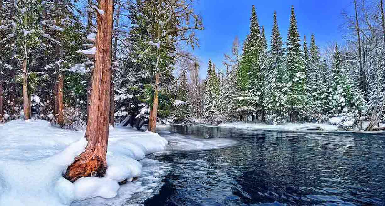 20 Beautiful Nature HD Wallpapers  The Art Inspiration