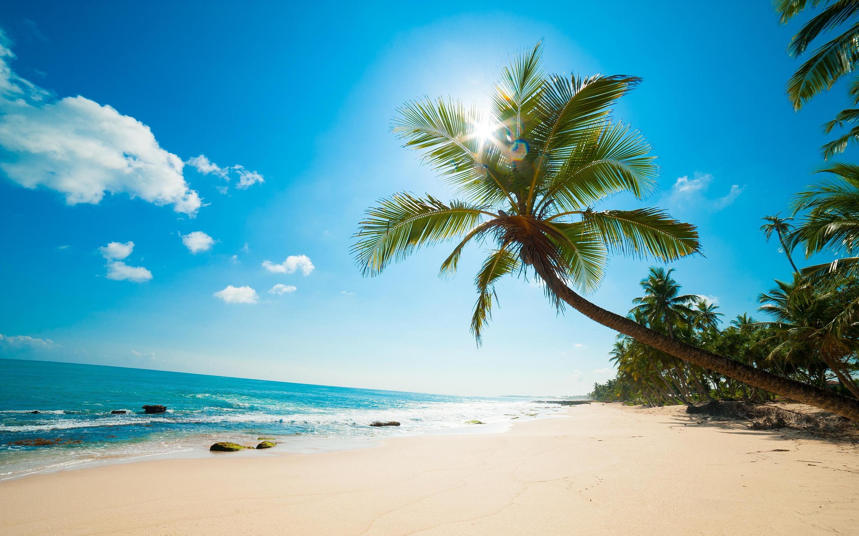 Descarga fondos de escritorio Hermosa playa del Caribe de [] de BBB 2880x1800