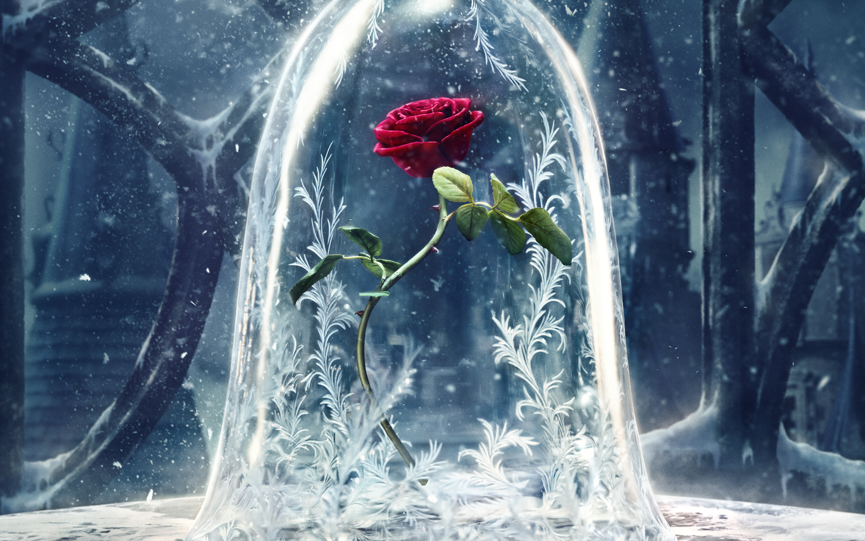 Beauty and the Beast Wallpaper 79 images 2880x1800