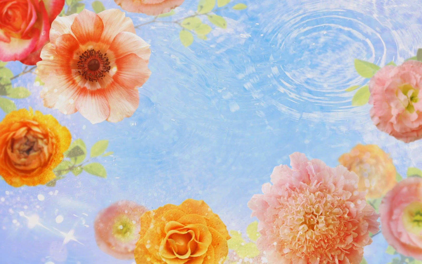 High Resolution Flower Themes Background Frame 1600x1000