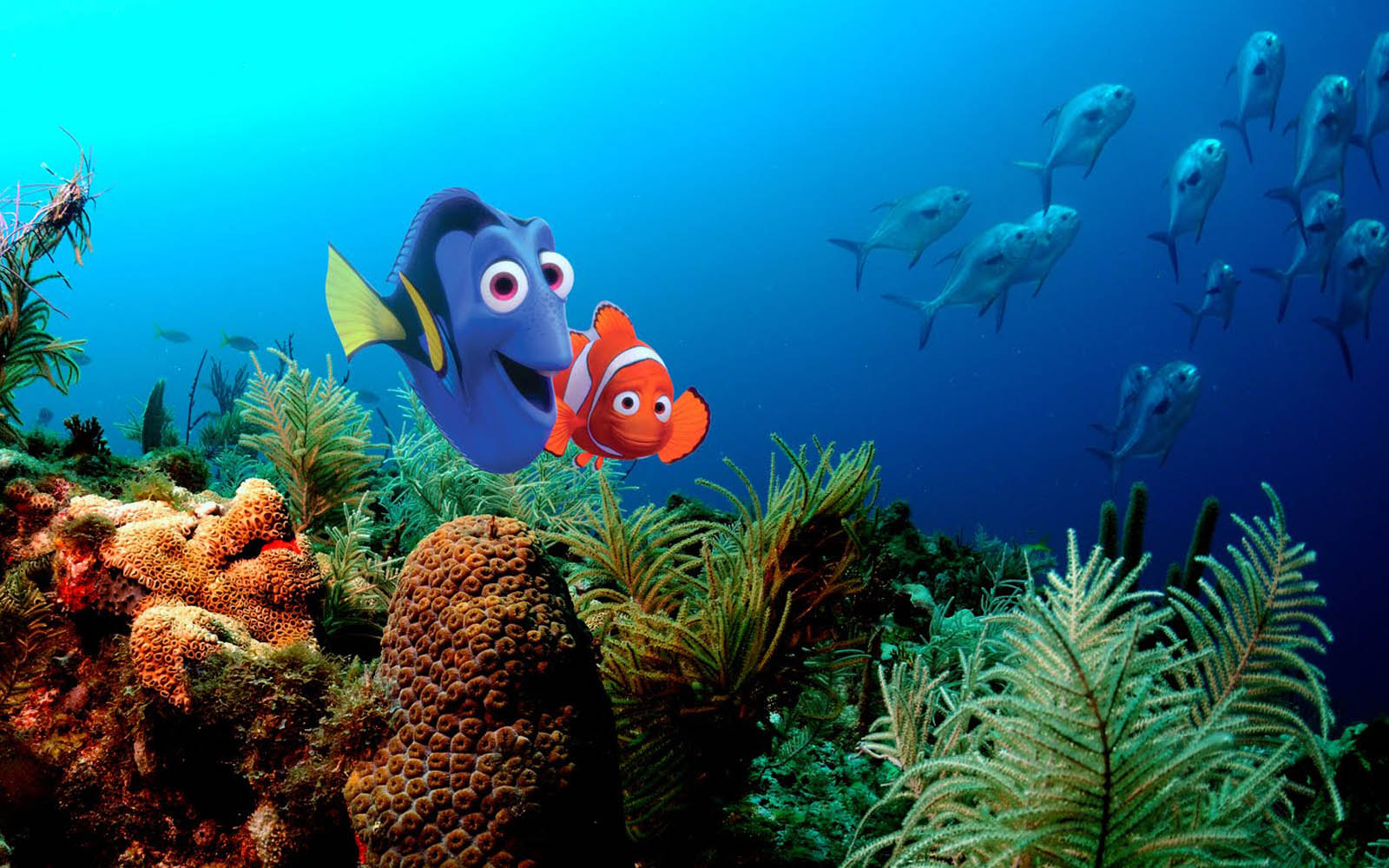 wallpapers Finding Nemo Wallpapers 1600x1000