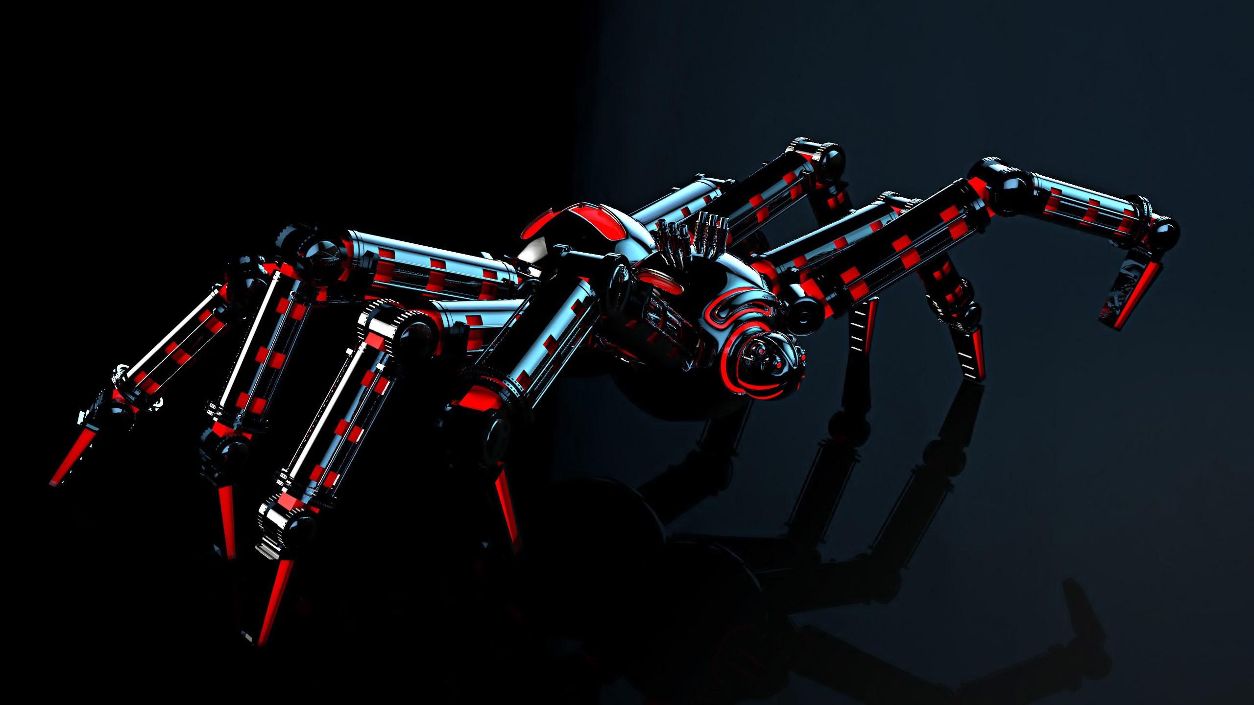 Black Widow Spider Wallpaper Hd wallpaper   1053037 2560x1440
