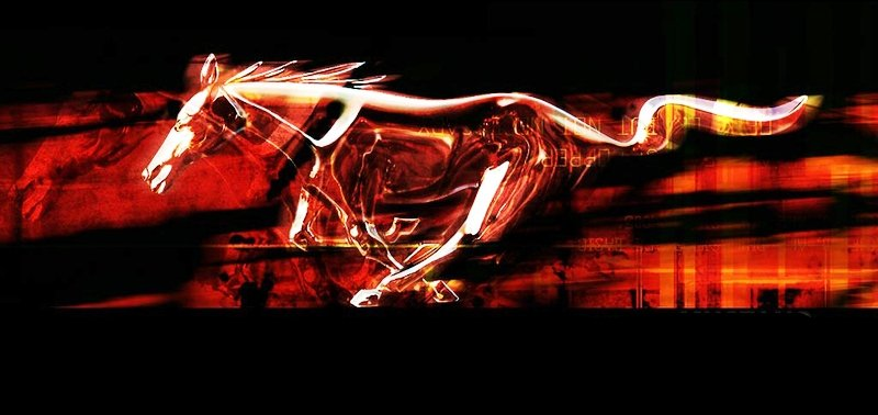mft wallpaper 800x384 wallpapersafari