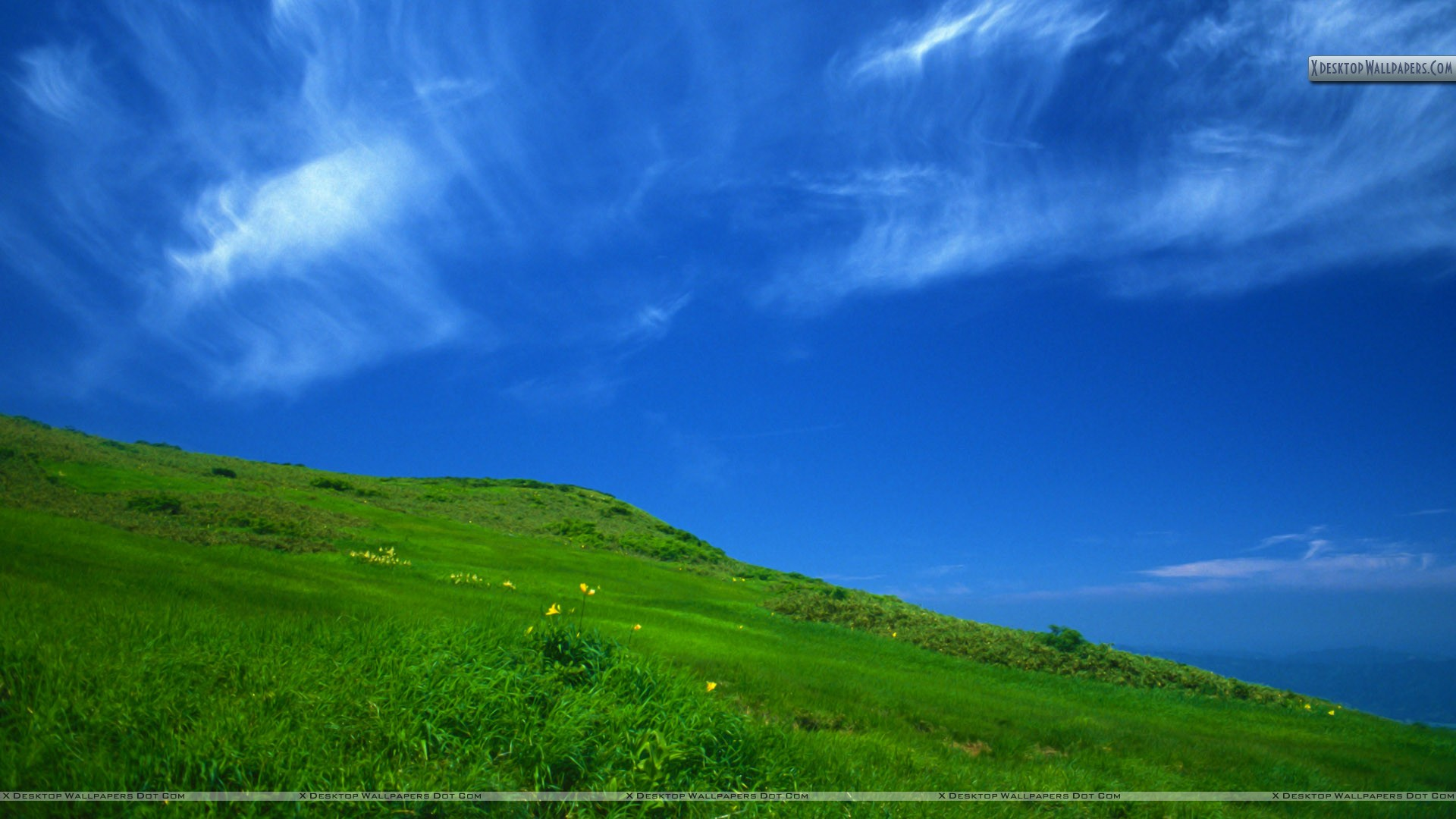 Clear Sky in a sunny day Wallpaper 1920x1080