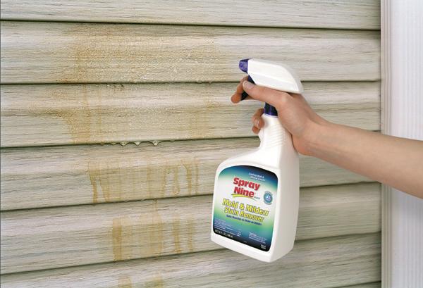 Cleaning Mold Off Wallpaper Wallpapersafari