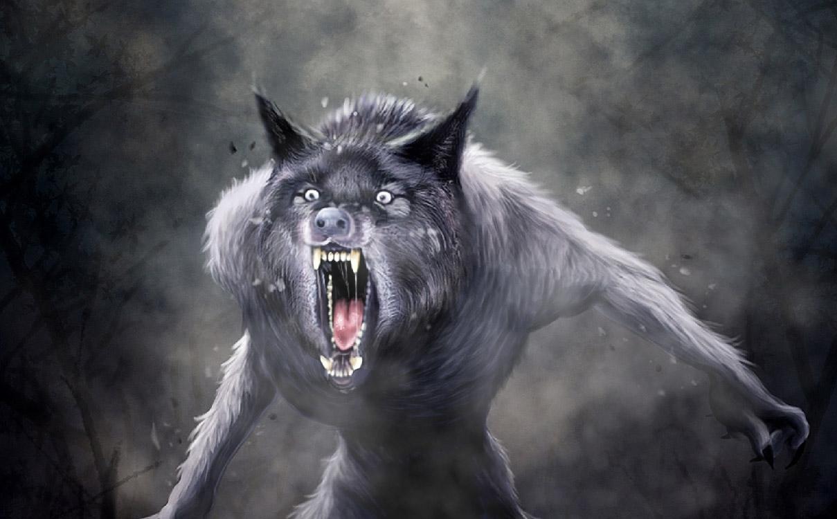 animated wolf desktop wallpaper