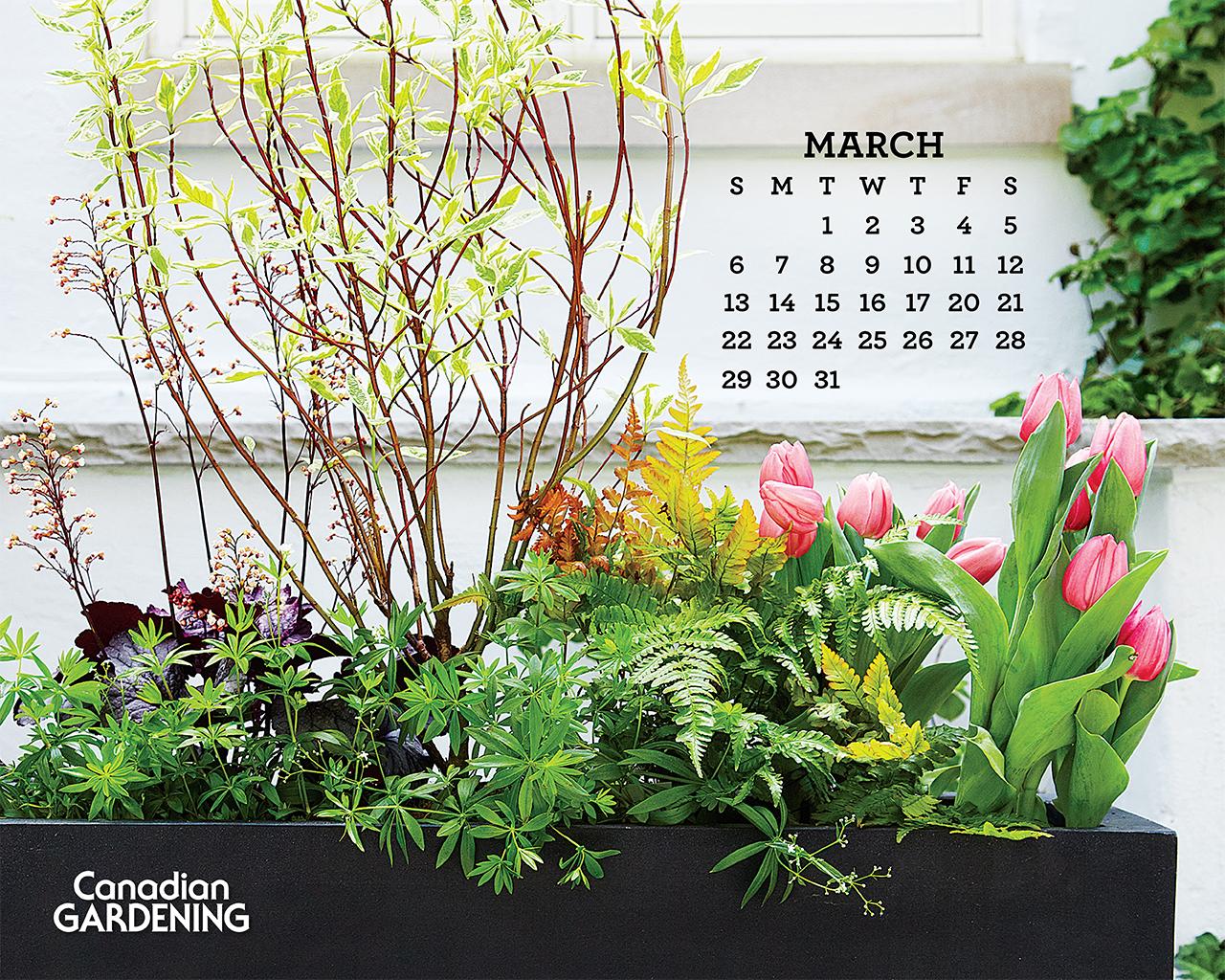 Desktop calendar March 2016   Canadian Gardening 1280x1024