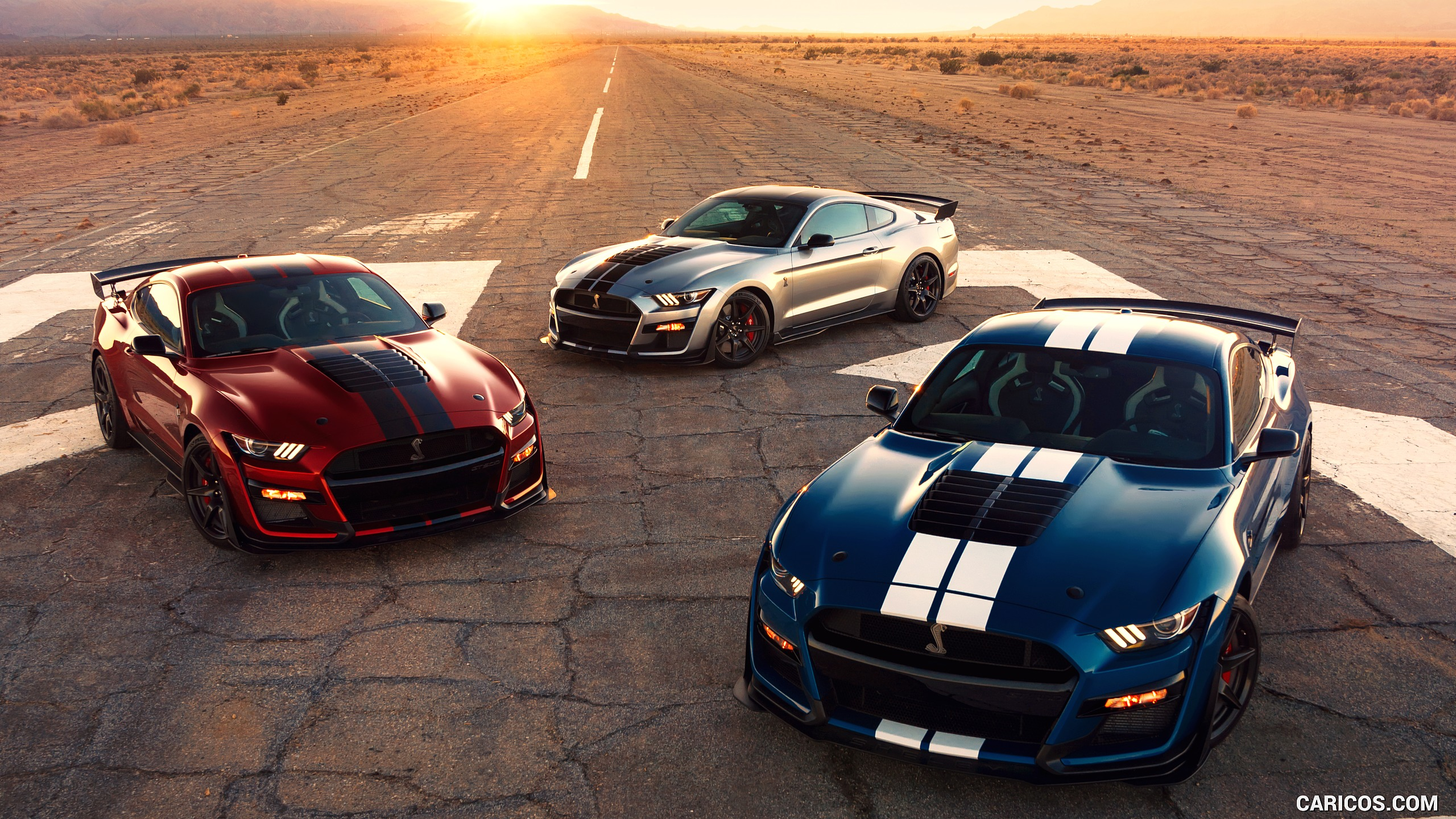 2020 Ford Mustang Shelby GT500 HD Wallpaper 110 2560x1440