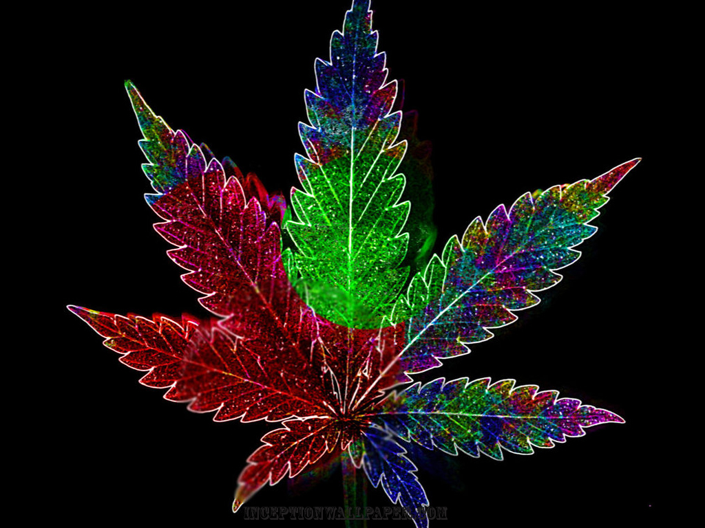 Psychadelic Weed Leaf   WeedPad Wallpapers 1024x768