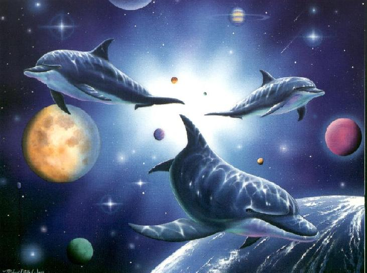 48 free animated dolphin screensavers wallpaper on - Cool anime screensavers ...