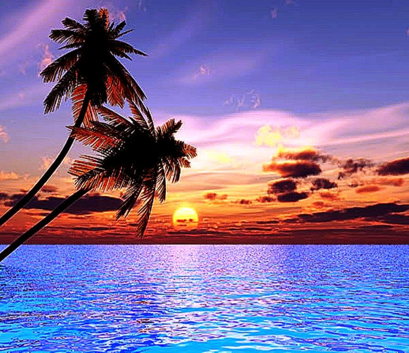 Free Download Ocean Sunset Desktop Wallpapers Hd Background Wallpaper Gallery 829x714 For Your Desktop Mobile Tablet Explore 45 Sunset Wallpaper For Desktop Widescreen Beach Sunset Wallpapers Hd Beach Sunset