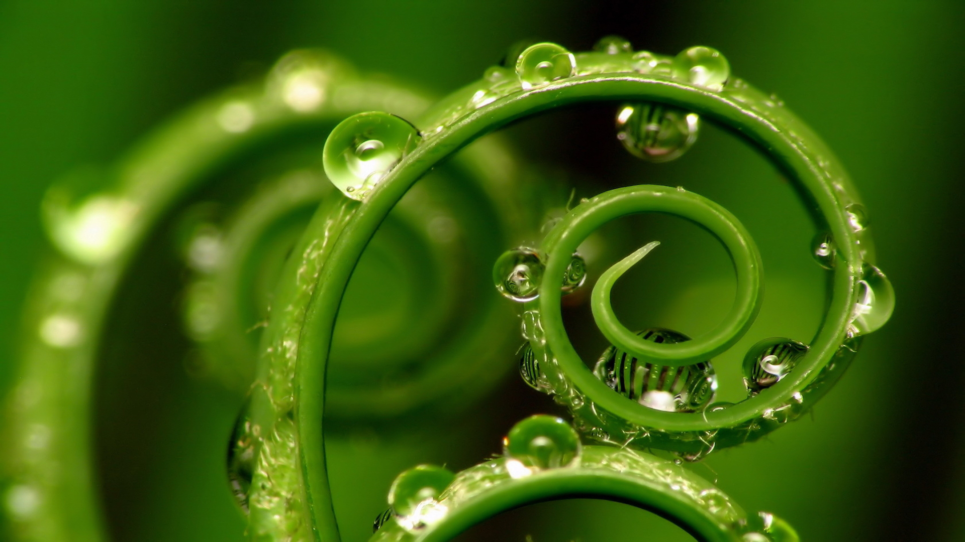 hd wallpaper you are viewing the nature wallpaper named green water hd 1920x1080