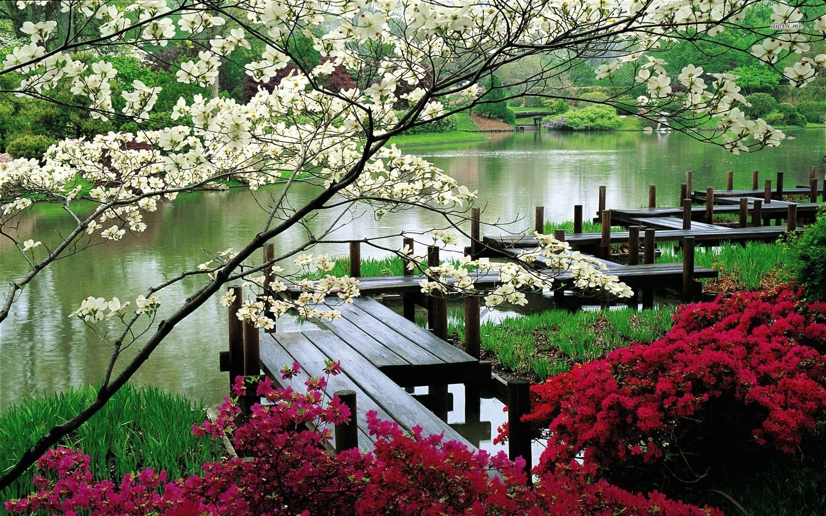 Flower Garden Wallpaper Background japanese desktop wallpaper - wallpapersafari