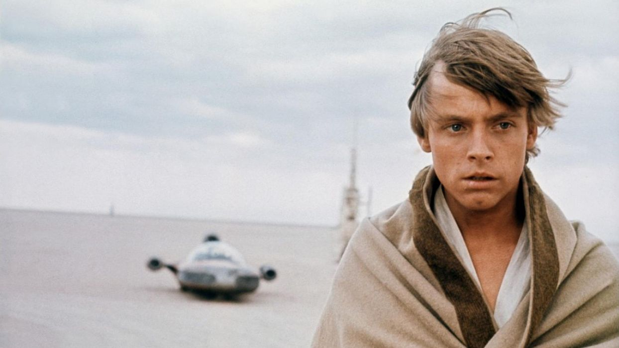 Star Wars Luke Skywalker Mark Hamill wallpaper 1920x1080 1244x700