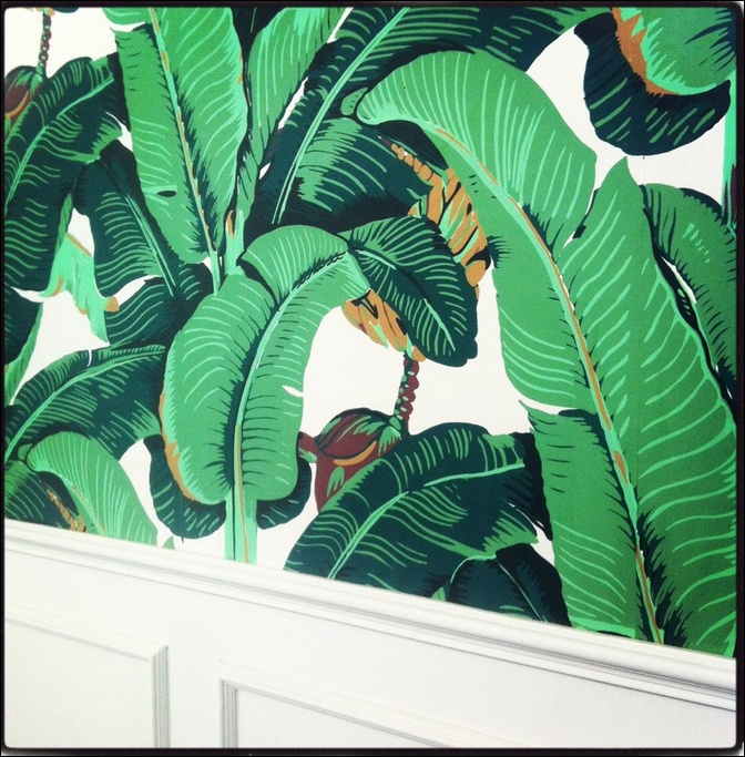 wallpaper Miami Home Pinterest Palm Wallpaper Beverly Hills and 672x683