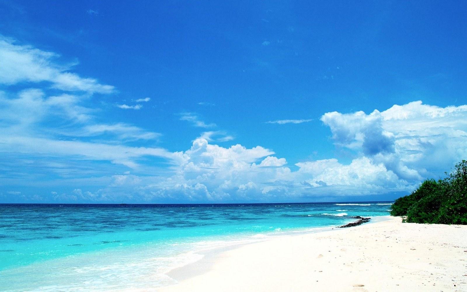 Free Download Beach Landscape Scene Wallpapers55com Best