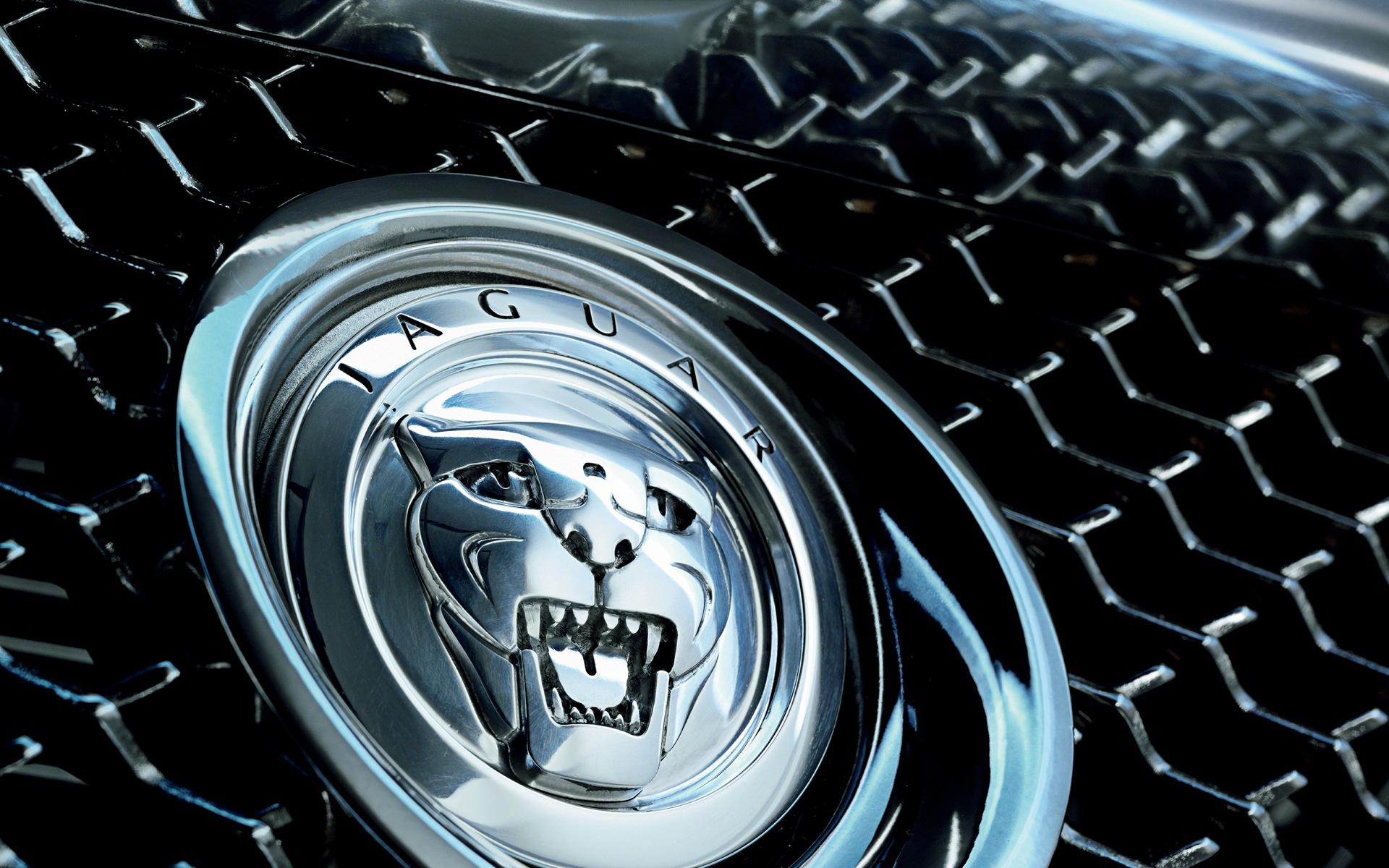 jaguar wallpaper 1920x1200
