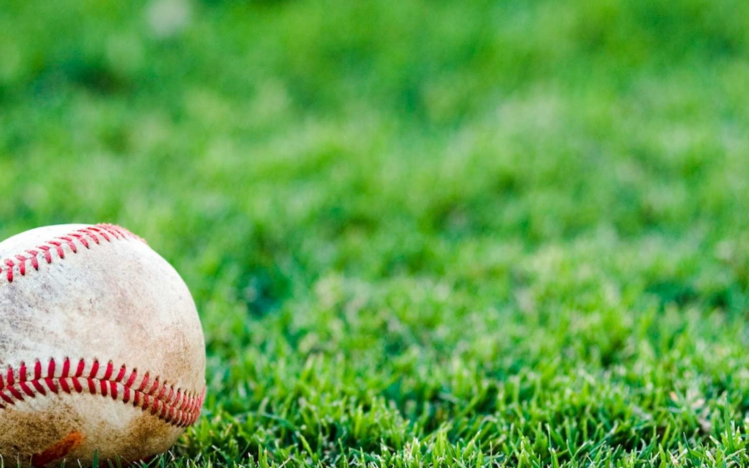 sports grass baseball depth of field 1450x1100 wallpaper Wallpaper 2560x1600