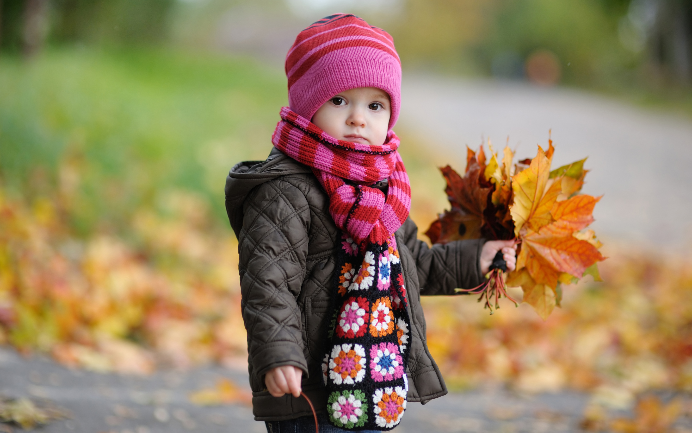 Cute Baby in Autumn Wallpapers HD Wallpapers 2880x1800