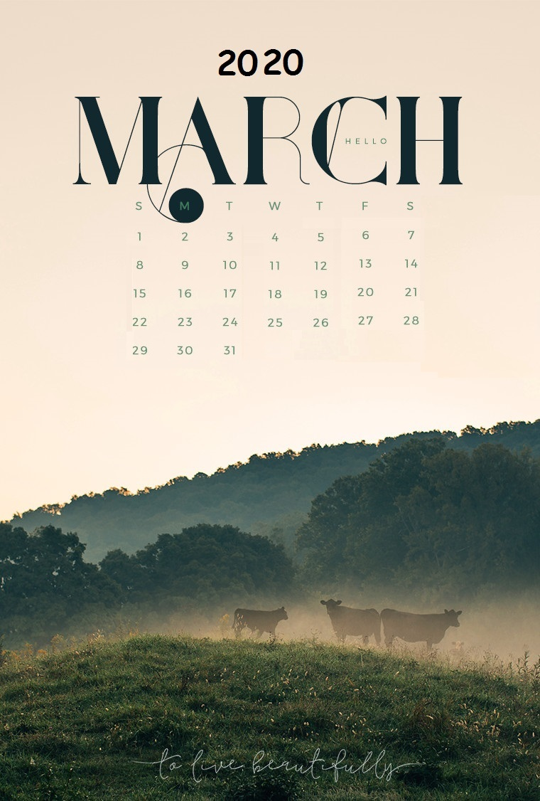 iPhone March 2020 Wallpaper Calendar Latest Calendar 760x1126