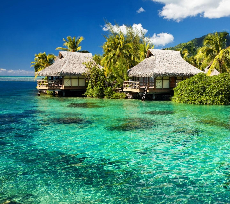 Paradise Island: [49+] Free Island Wallpaper And Screensavers On