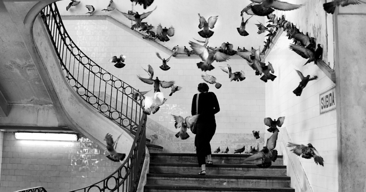 Henri Cartier Bresson Miller Creation 1200x630