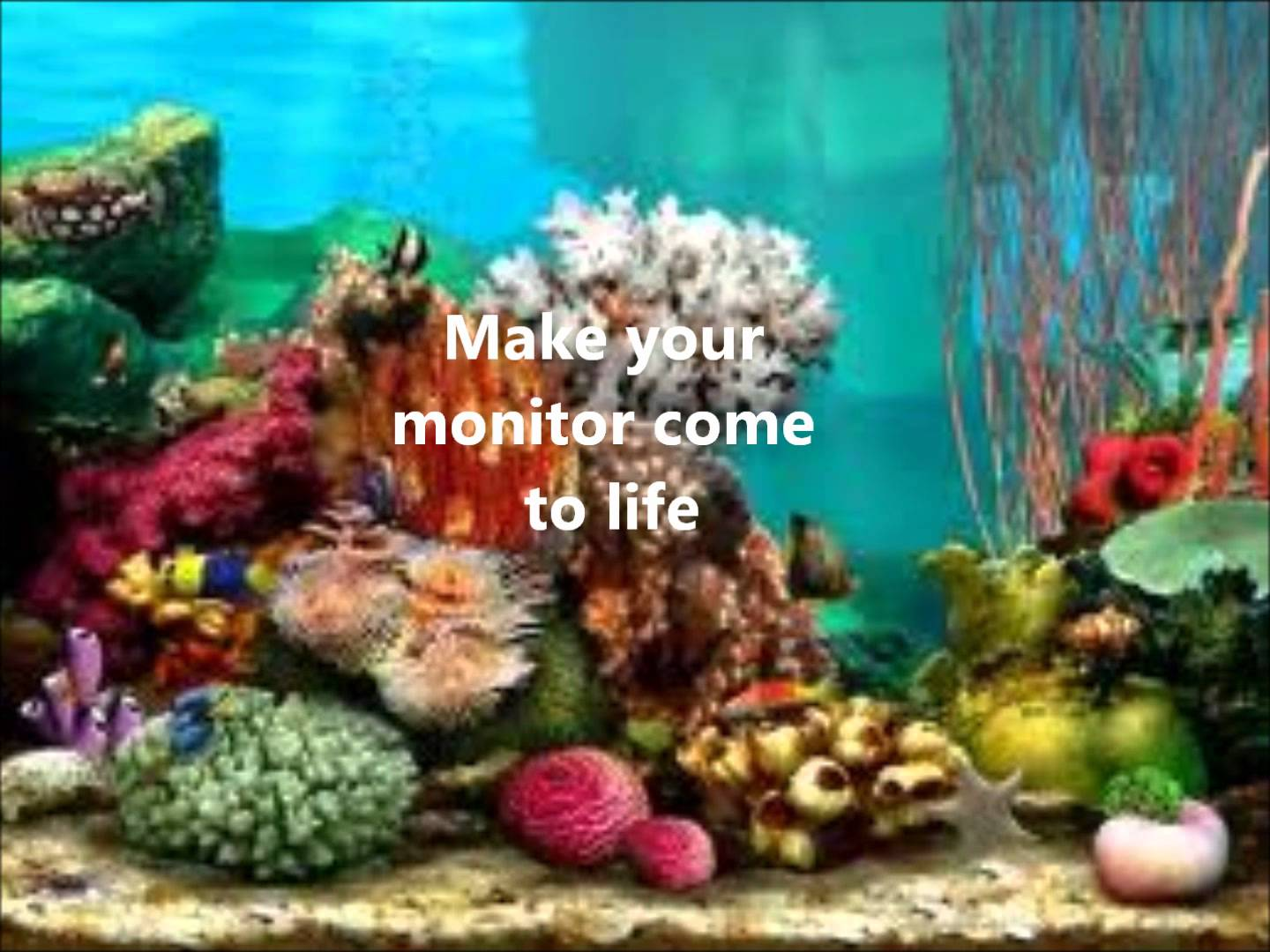 Image gallery moving underwater screensavers for Fish tank screen