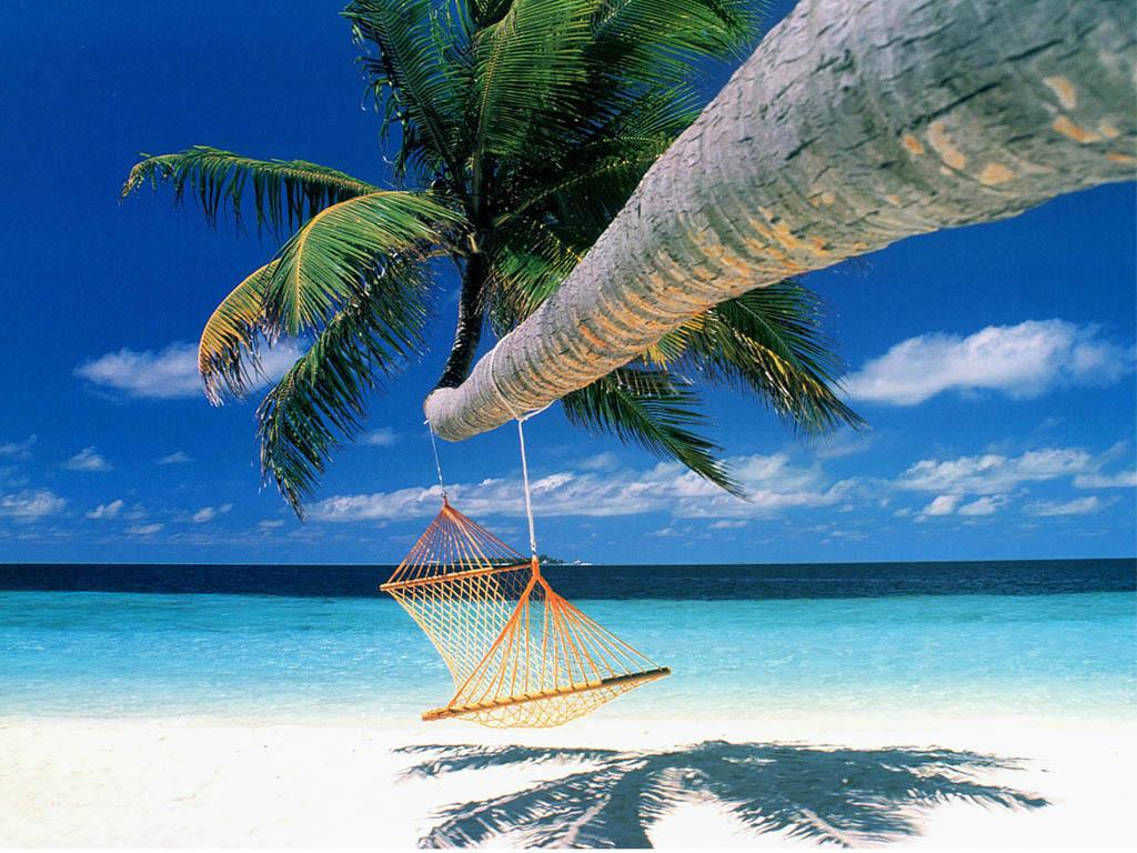 Lovely Summer Season And Beach Wallpapers HD Desktop Wallpapers 1024x768