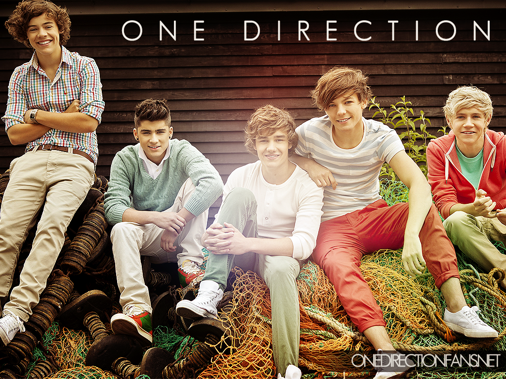 One Direction images One Direction HD wallpaper and background 1024x768