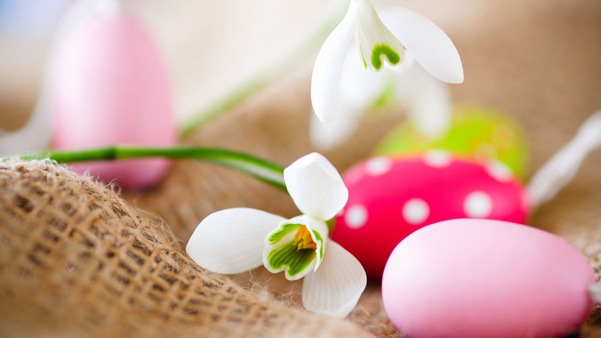 Happy Easter HD Wallpapers   Wallpaper High Definition High Quality 1920x1080