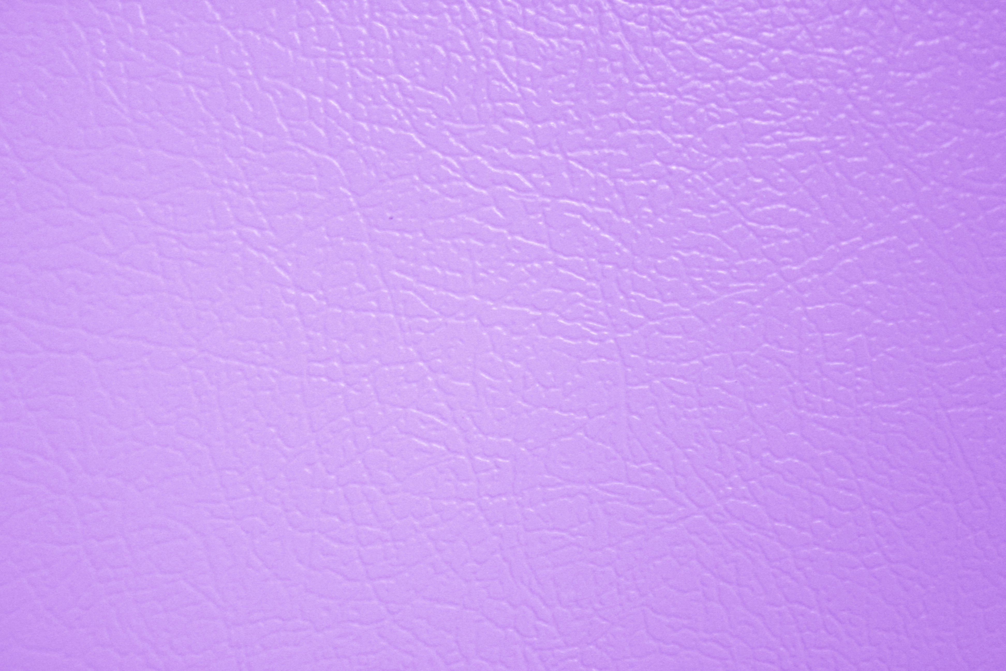 Lilac White Paint Colour