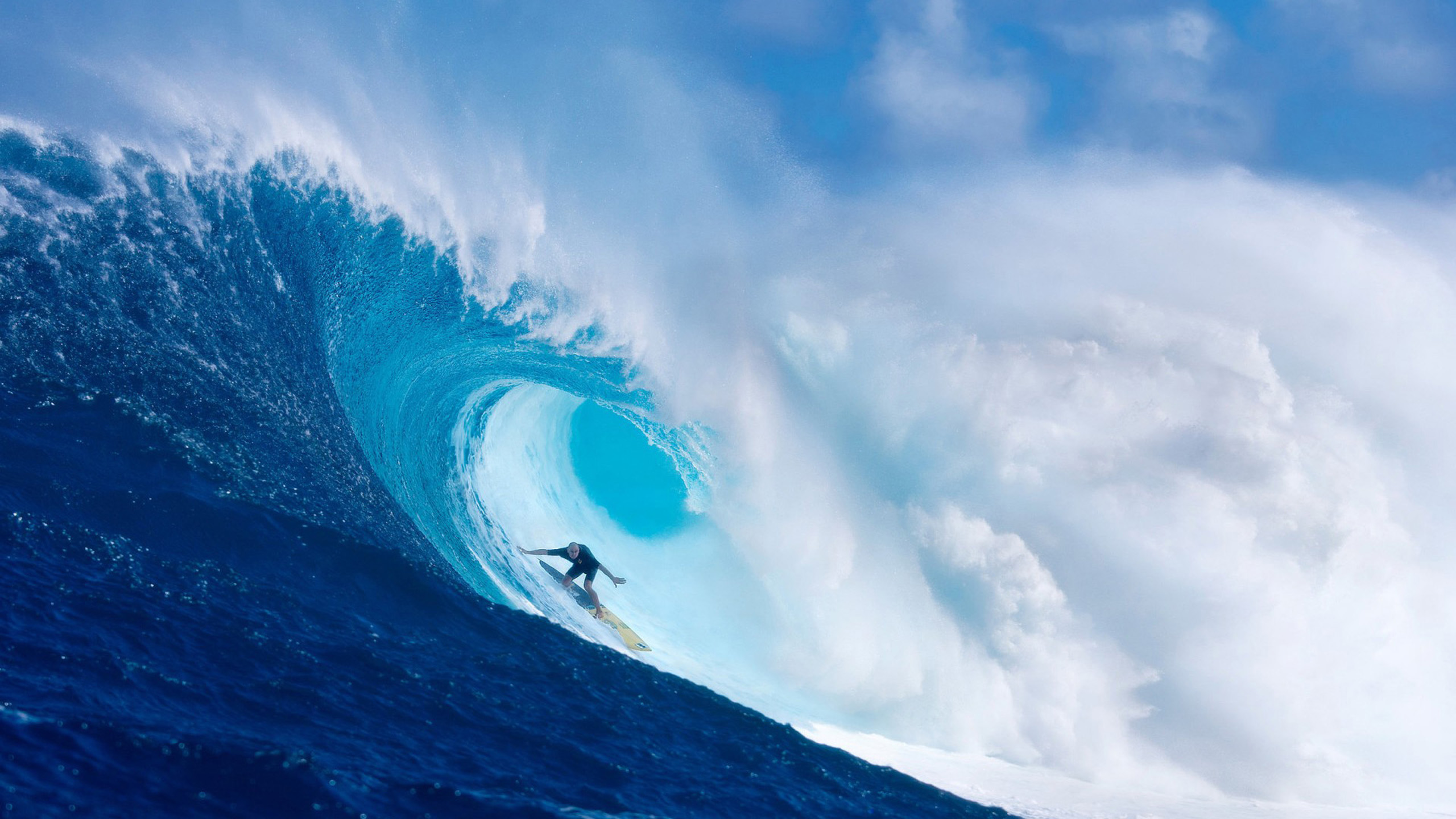 Ultimate Surfing cool wallpapers HD Wallpaper Downloads 2560x1440
