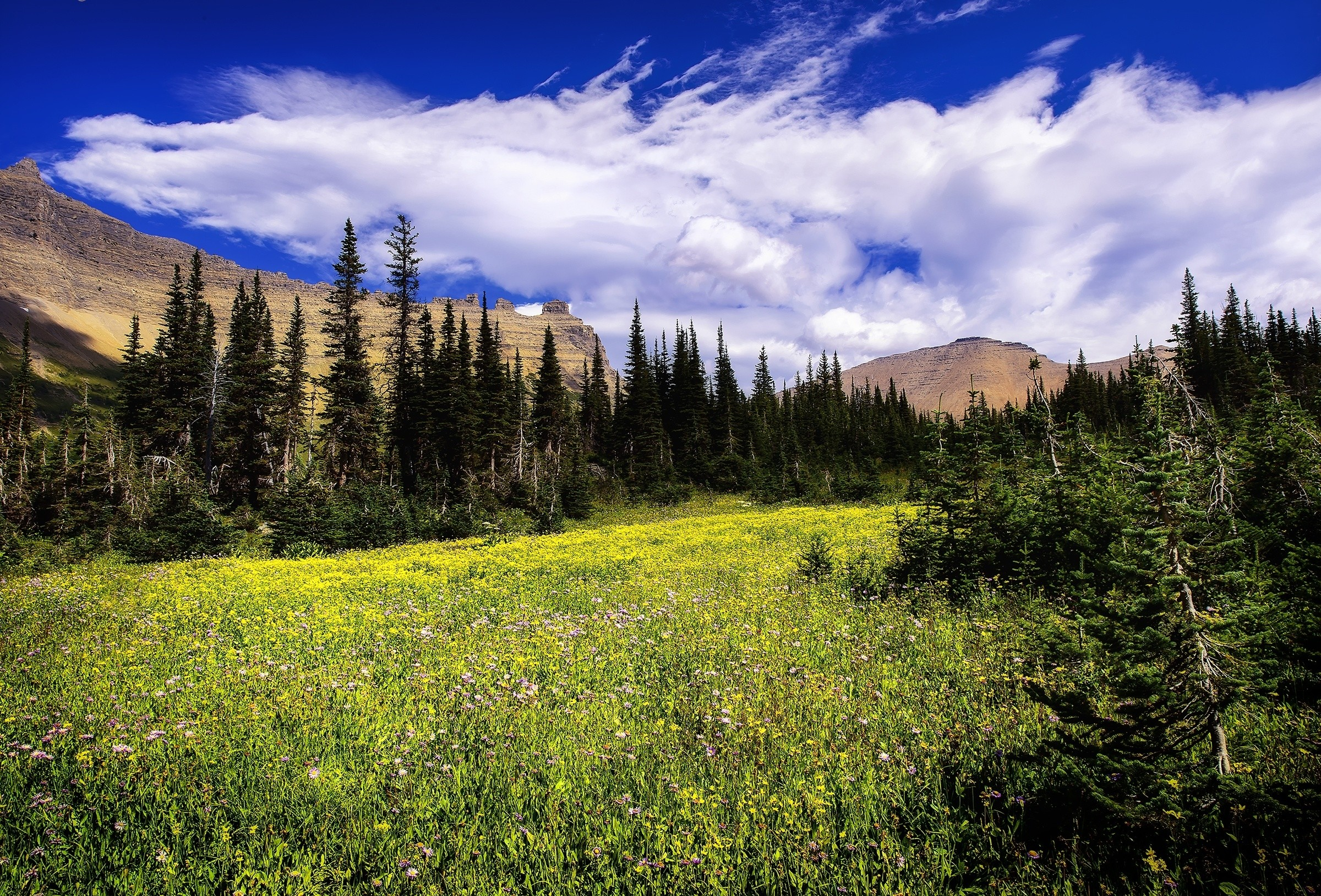Wallpaper Montana Glacier 2400x1628