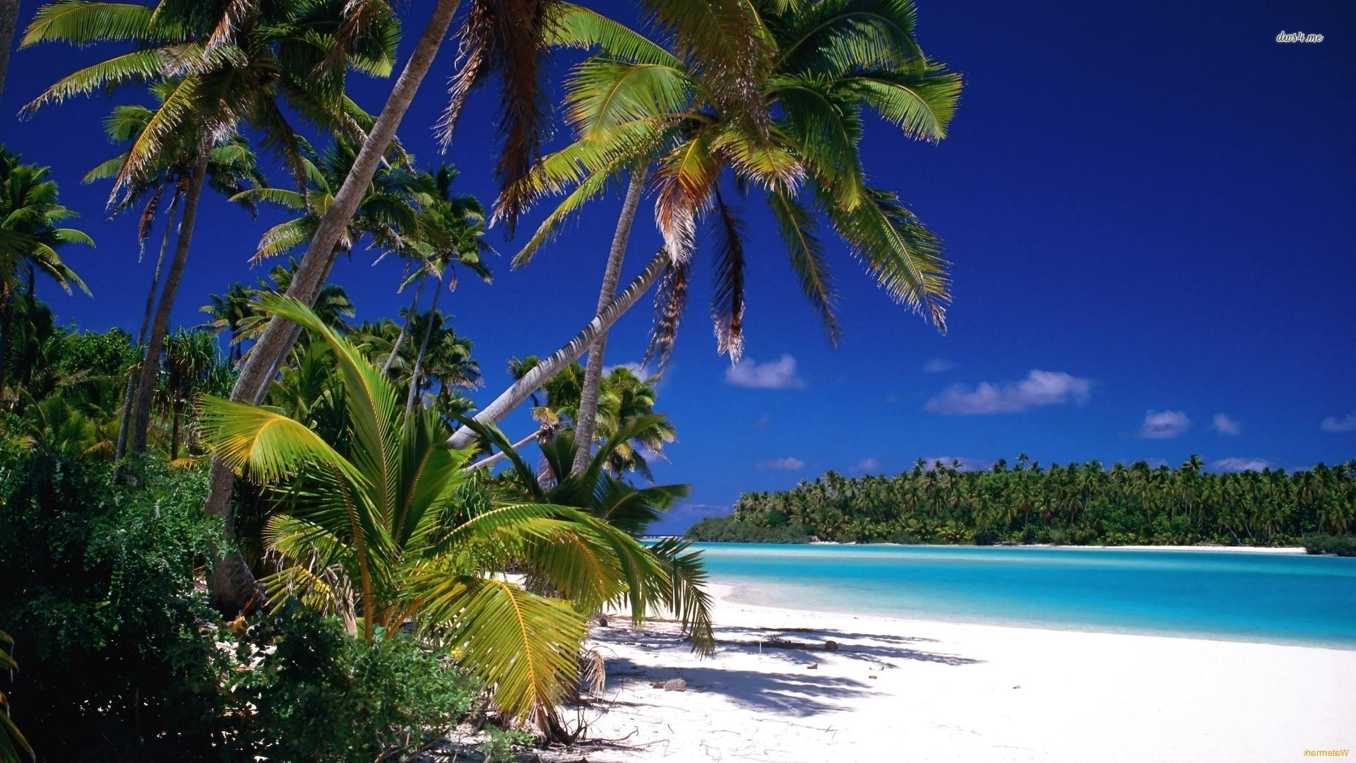 cook islands Desktop Backgrounds for HD Wallpaper wall  art 1920x1080