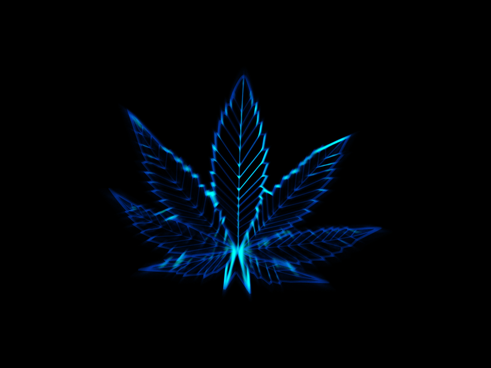 Pot leaves marijuana drugs wallpaper 1600x1200 37369 WallpaperUP 1600x1200